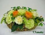 T,Tomoko