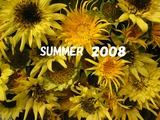 2008夏