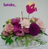 satoko,2