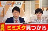 【テレビ】TBS「Nスタ」が置物のミミズクを本物と間違え生中継 謝罪訂正