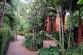 betel garden 2