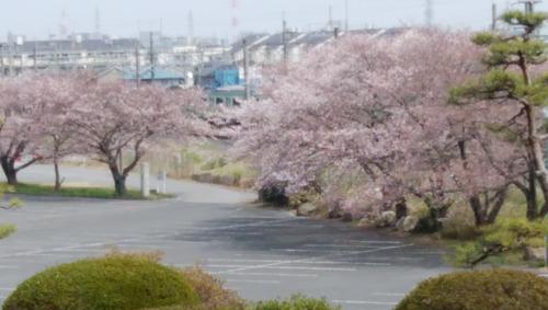 の桜グランドホテル
