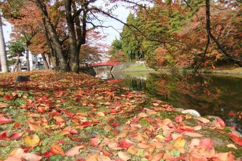 上杉公園の秋