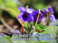 IMG_4188