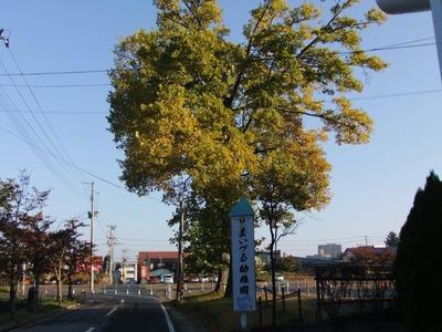 米沢の秋8