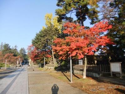 米沢の秋5