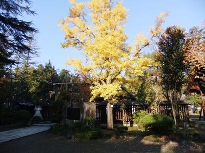 米沢の秋10