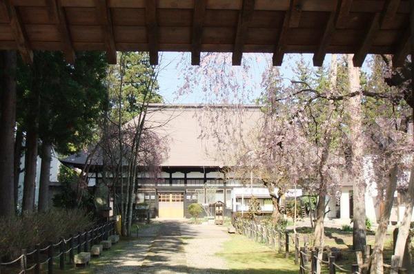 桜2部の1