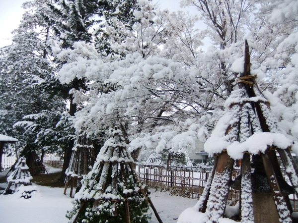 米沢の雪景色12月23日