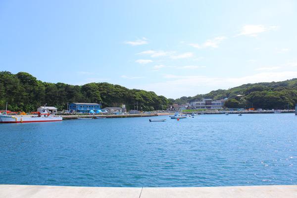 田代島 (82)