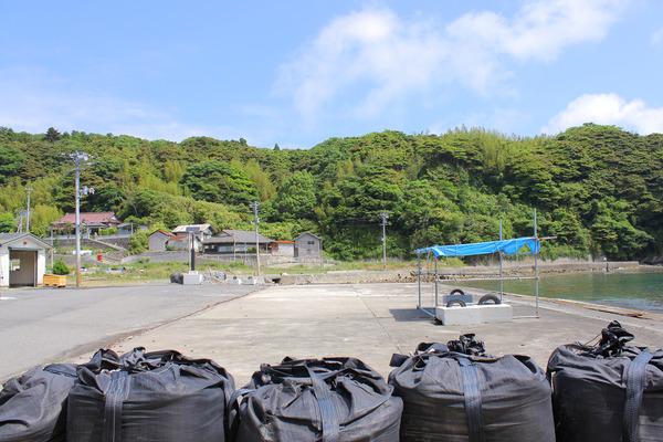 田代島 (8)