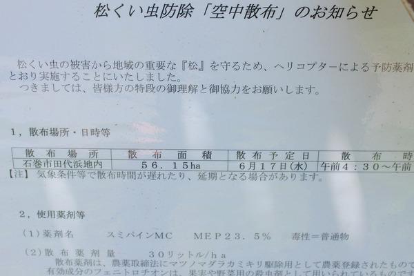 田代島 (29)