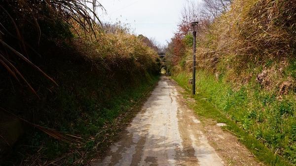 風の道31