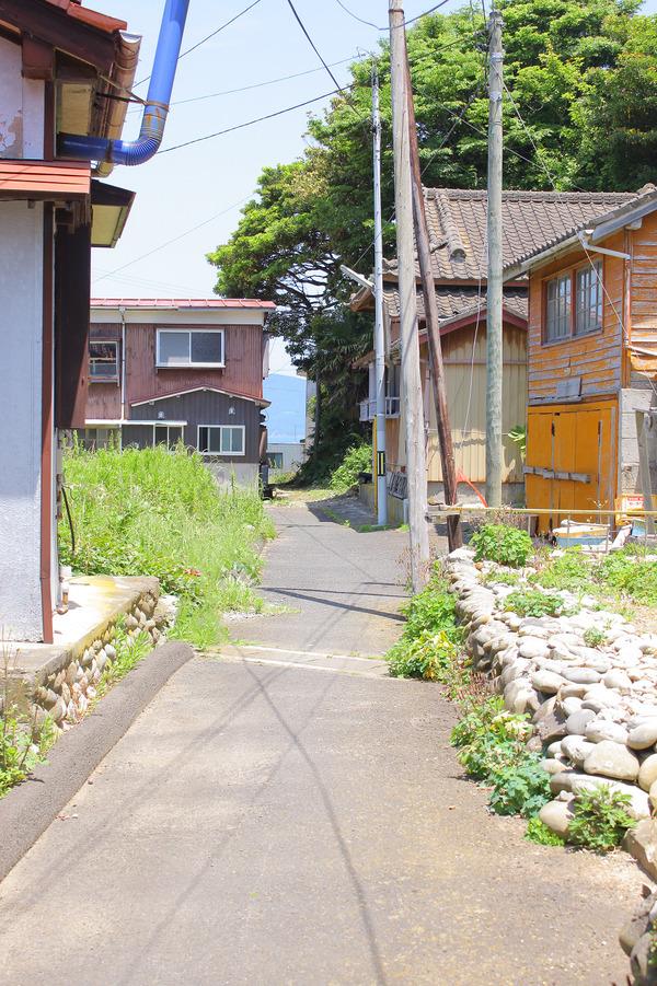 田代島 (58)