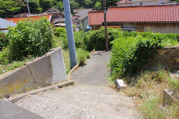 田代島 (59)