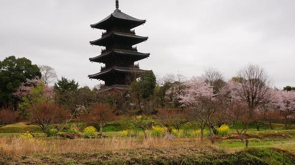 国分寺五重塔2