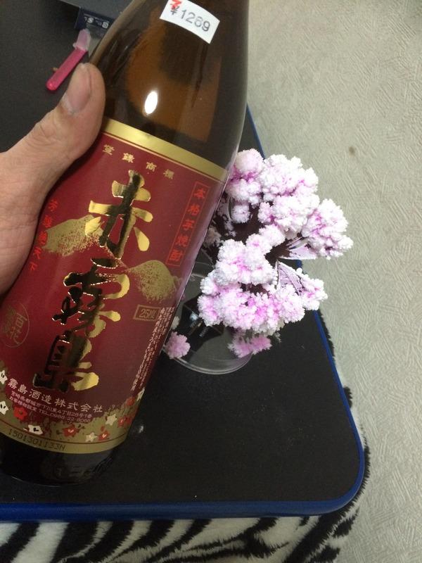 マジック桜 (10)