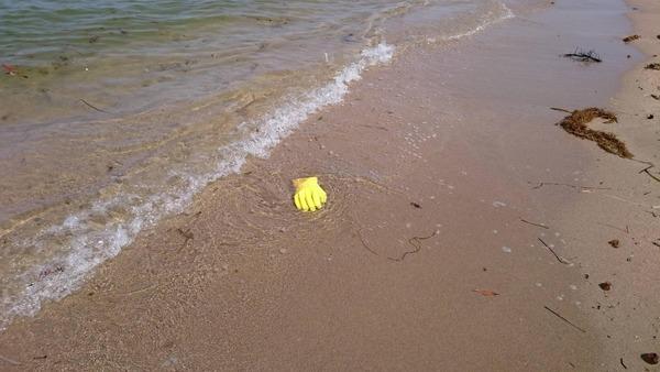 黄色い手袋