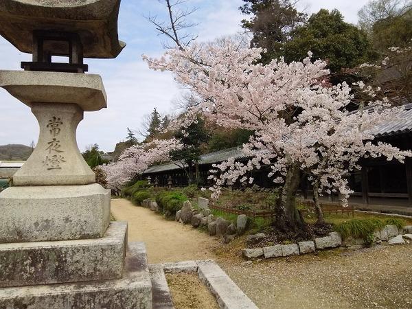 吉備津神社10