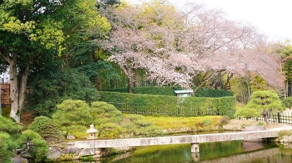 岡山後楽園11