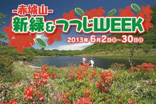 2013tsutsujiweek