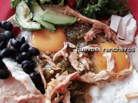 b_comida2019_08_24-14