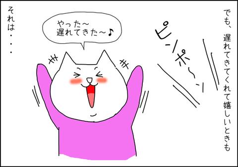 b_takuhaipizza2