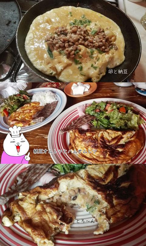 b_comida2017_8_11-7