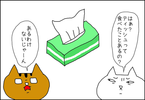 b_tofu3