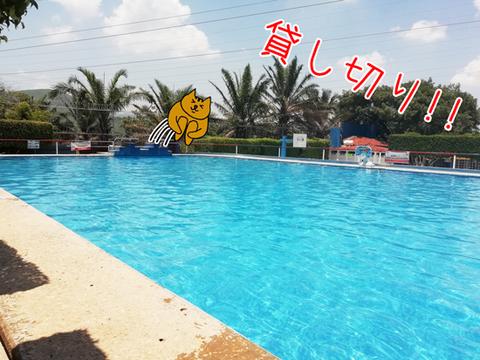 b_parque-aquario12