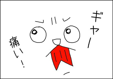 b_mi-gato3