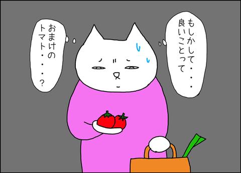 b_arcoiri5