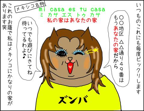 b_tengomuchascasas3