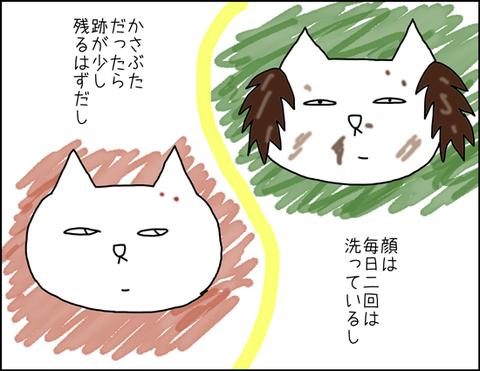 b_shimi2