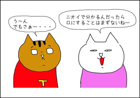b_arroz-de-plastico3