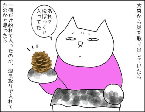 b_carbon1
