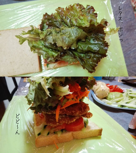 b_comida2018_9_15-3