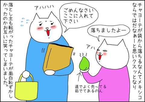 b_kamibukurokara5