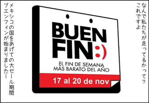 b_buenfin2017-5