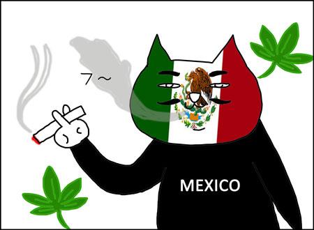 b_legalizacion-mota1