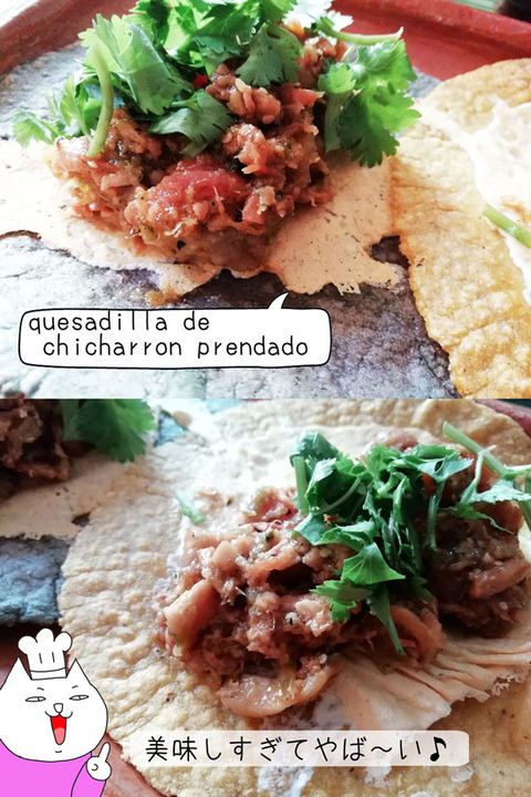 b_comida2019_08_31-41