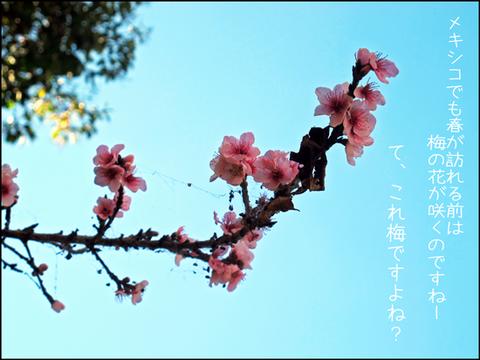b_uewomuite5