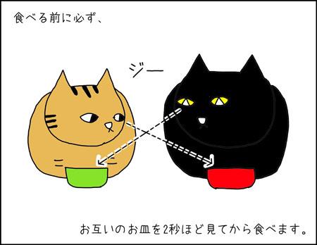 b_rutina-de-mis-gatos2