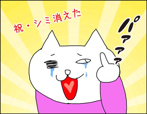 b_shimi1
