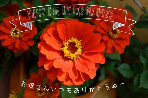 b_dia-de-madre-japon