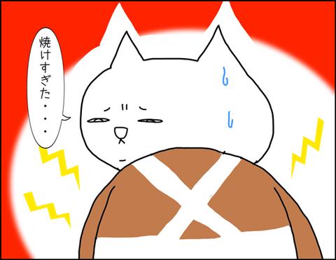 b_hiyake1