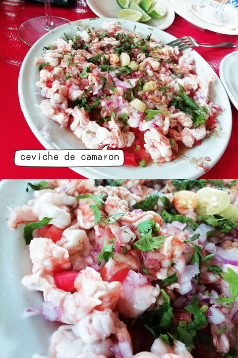 b_comida2019_06_15-18