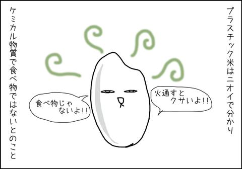 b_arroz-de-plastico2