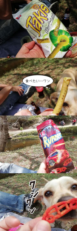 b_comida2019_04_06-6