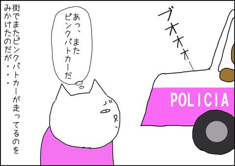 b_patrulla-rosa-2-1